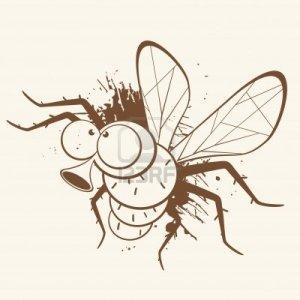 5002039-dibujos-animados-clasicos-de-moscas[1]